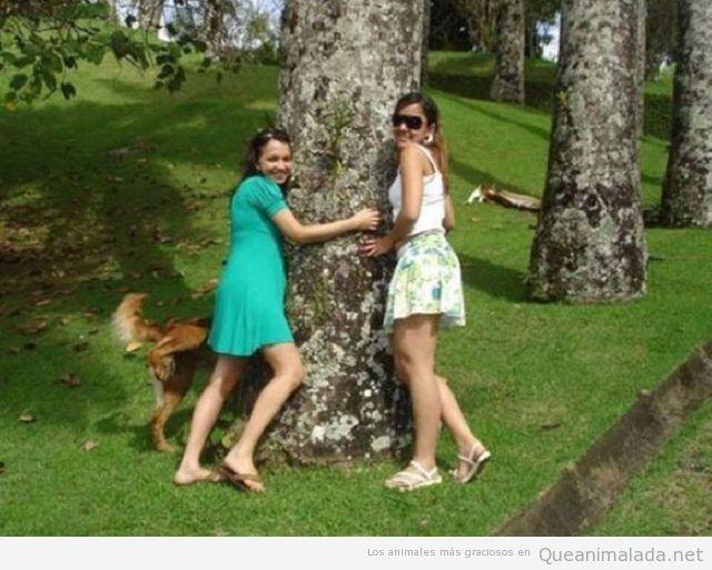 Perro troll mea encima de una chica en un árbol