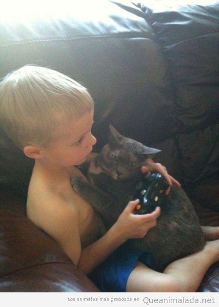 Foto graciosa y bonita de un gato abrazando a un niño que juega a la videoconsola