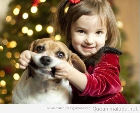 Foto divertido de una niña haciendo sonreir a su perro