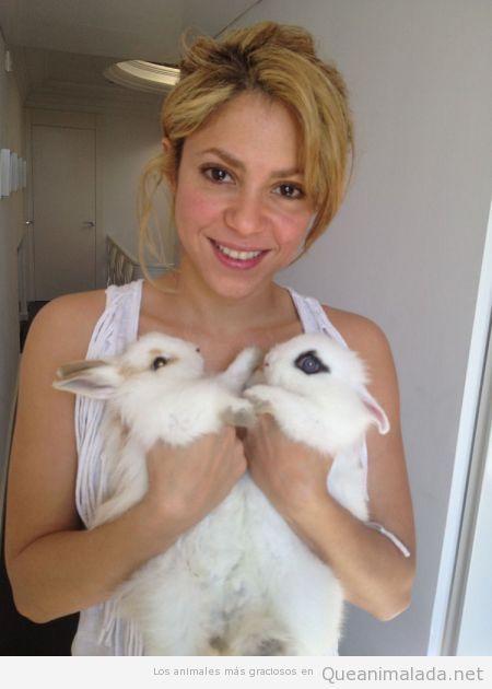 Shakira con dos conejos blancos