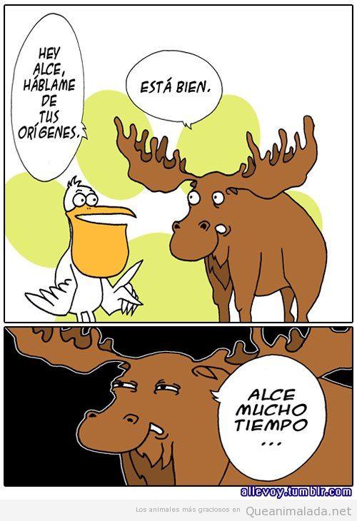 Comic gracioso de un alce mucho tiempo