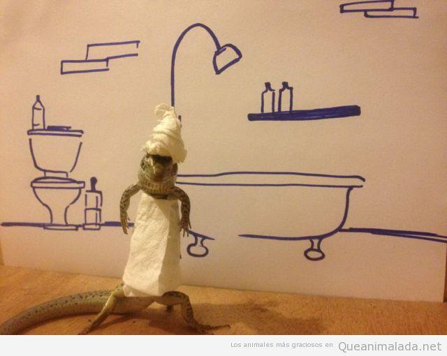 Foto graciosa de un gecko con papel de wc parece toalla de baño