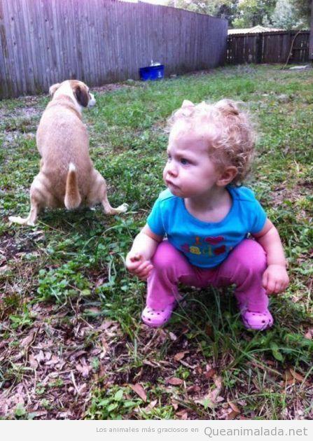 Imagen divertida de una niña pequeña imitando a un perro haciendo caca