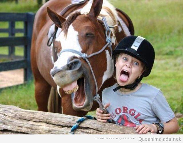 Foto divertida de un caballo sonriendo con una chica