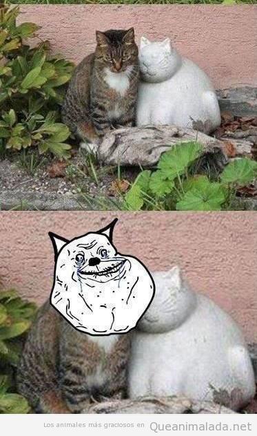 Foto graciosa de un gato enamorado de un gato de escayola, forever alone