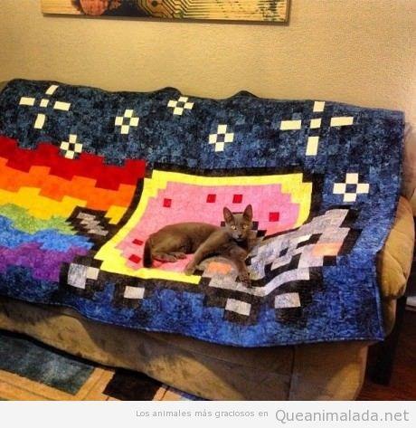 Manta de sofá de Nyan Cat con gato enima