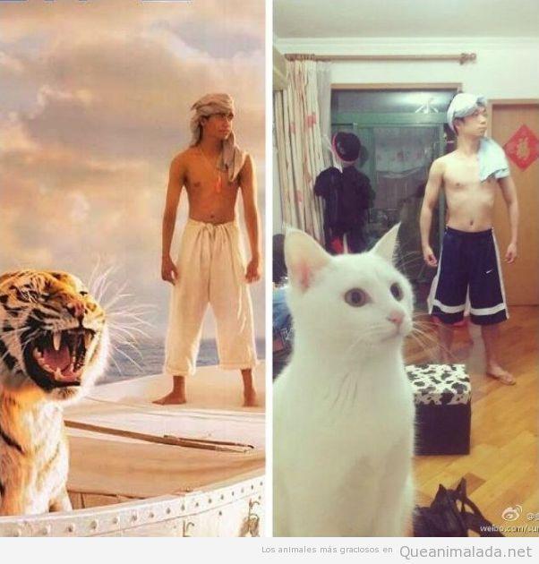 Imagen divertida de un chico con un gato imitando La Vida de Pi