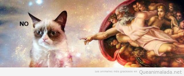 Creación de Adan, Capilla Sixtina, con Grumpy Cat