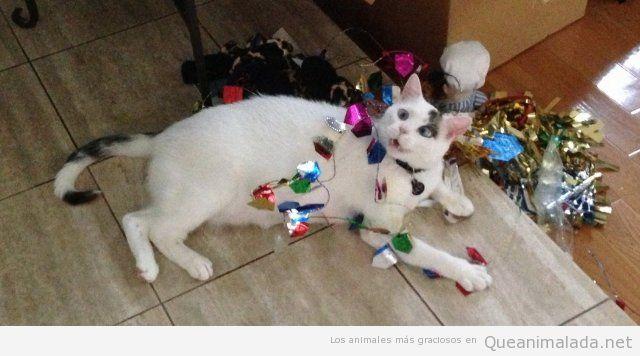 Gato con cara de loco envuelto en adornos de Navidad