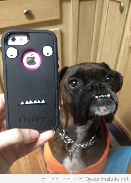 Carcasa de móvil con parecido razonable perro