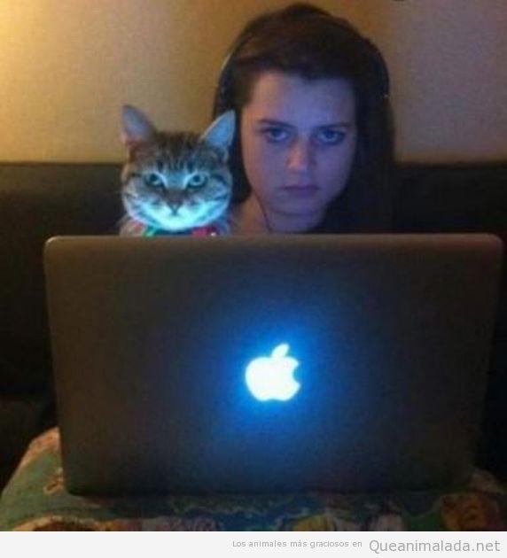 Imagen graciosa de chica y gato con la misma mirada