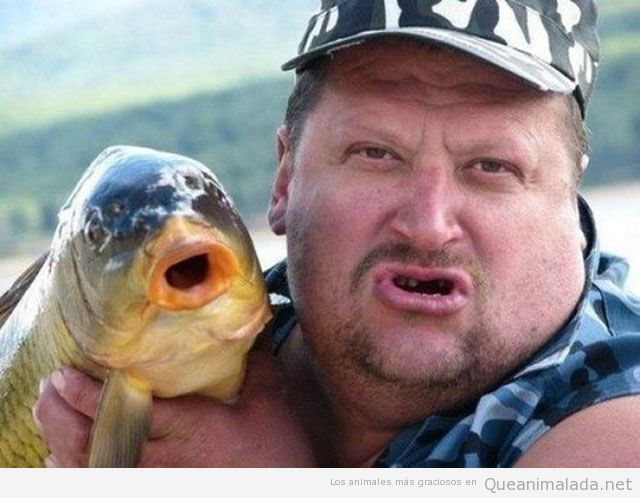 Foto graciosa de un hombre y un pescado que se parecen
