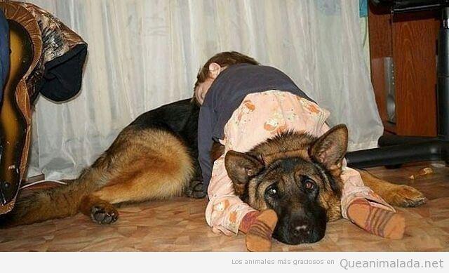 Imagen graciosa de un niño tumbado sobre un perro