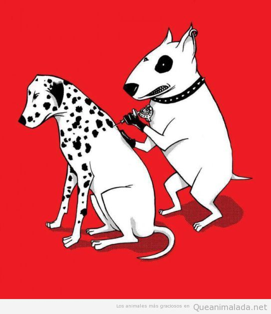 Dibujo gracioso de un perro tatuándo a un dálmata