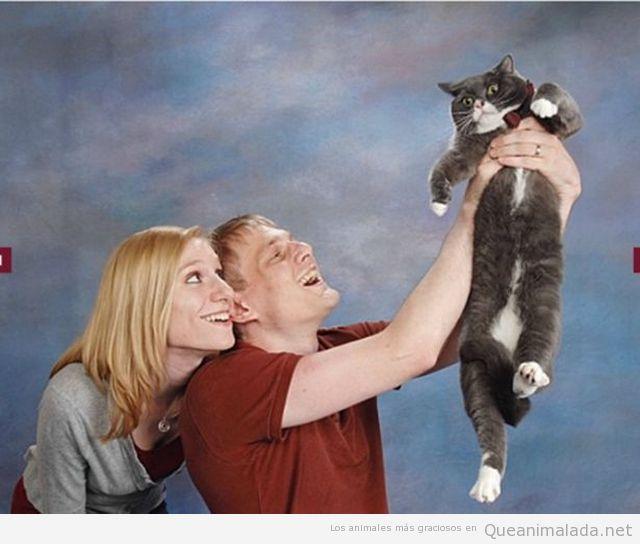 Imagen de estudio graciosa con una pareja y un gato