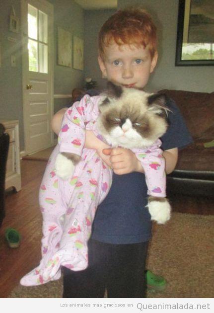 Foto graciosa de un grumpy cat con pijama