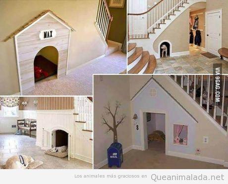 Casa de perro alucinante en el hueco de la escalera
