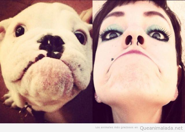 Imagen graciosa de perro y su parecido con su dueña