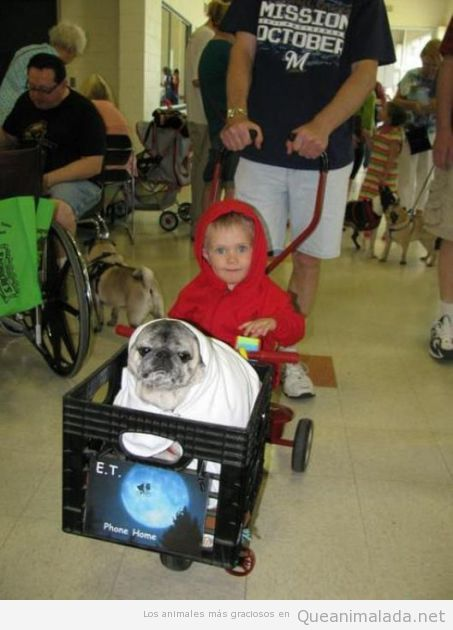 Disfraz original y gracioso de un niño disfrazado de ET con su perro