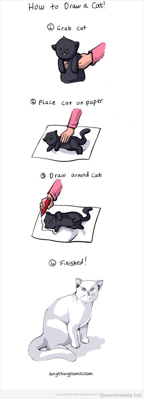 Comic gracioso, cómo dibujar un gato