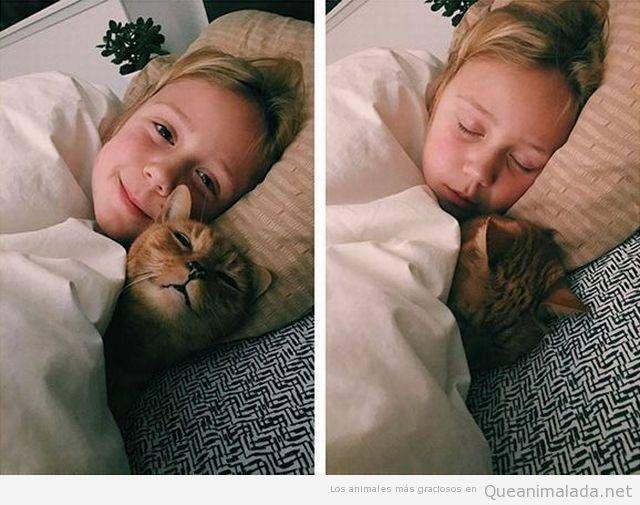 Foto bonita niña y gato durmiendo juntos