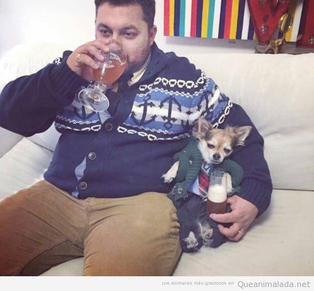 Foto graciosa hombre y perro con jerséis en Navidad