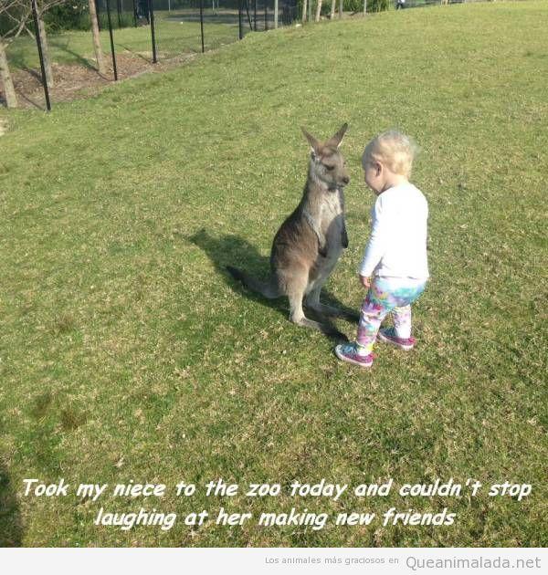 Foto graciosa canguro y niño pequeño