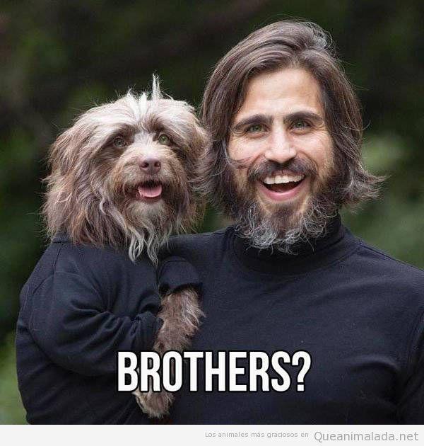 Foto bonita de un hombre y un perro que parecen hermanos