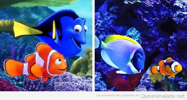 Animales de dibujos animados y sus dobles en la vida real 10