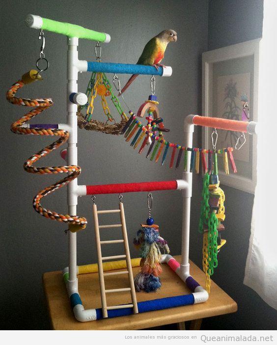 Jaulas impresionantes para pájaros 3