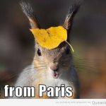 Qué? Me acaba de llegar de París!