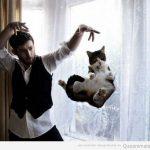 El Mago de los gatos