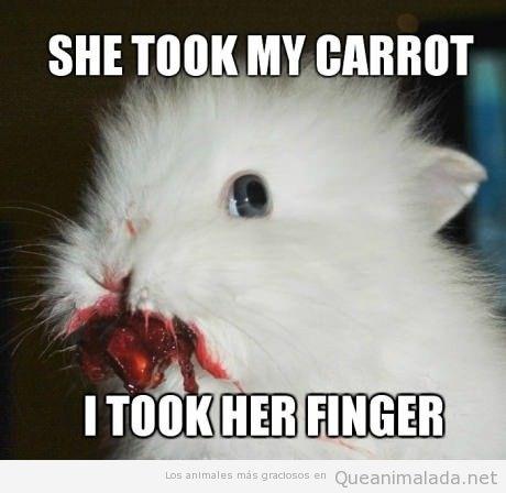 Conejo gracioso y chistoso con la boca llena de sangre