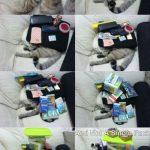 a ver cuántas cosas puedes poner encima de tu gato mientras duerme