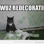 Oops, me habéis pillado redecorando la casa…