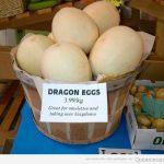 Se venden huevos de dragón?
