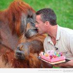 Feliz 50 cumpleaños!