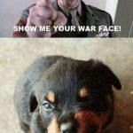 Venga, enséñame tu cara de malo