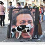 Perros y sus meadas épicas en la calle