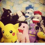 Dónde está el gato?