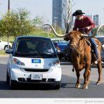 Cosas que pasan en Texas