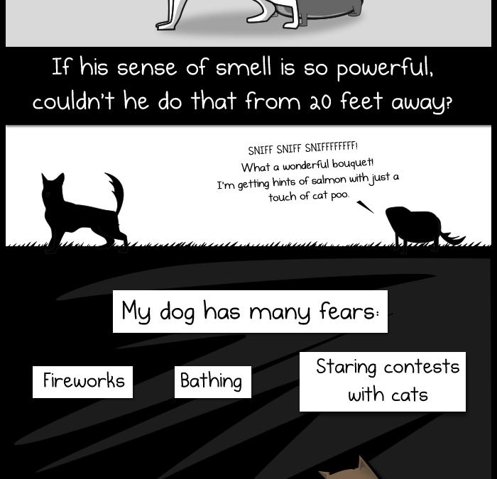 Mi perro: La paradoja (Comic)