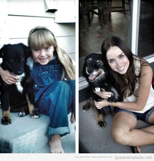 Fotos de un cachorro con una niña y la misma foto 15 años después