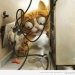RT si tu gato también se juega la vida por un galleta…