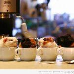Cuatro cafés para llevar!