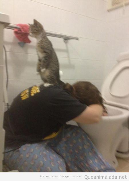 Tu gato siempre está apoyándote en los peores momentos