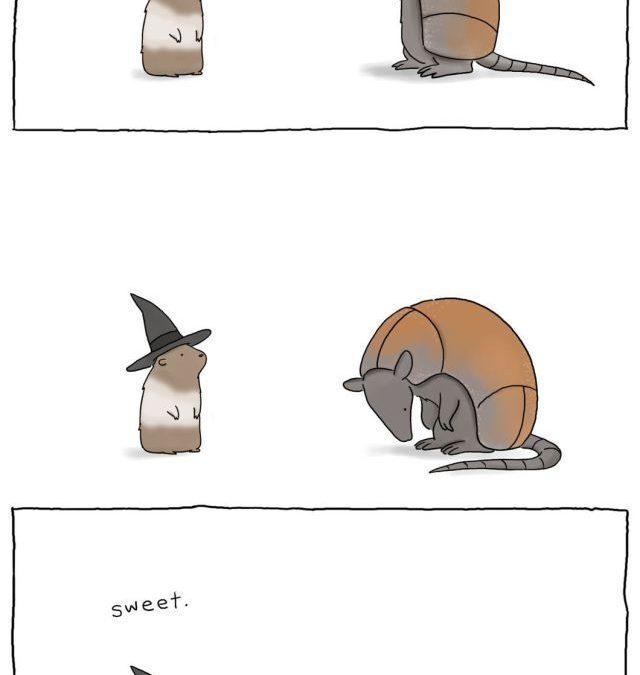 Disfraz de un armadillo en Halloween