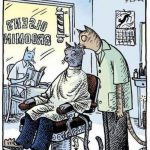 Gatos en el barbero...