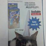 Se venden unicornios para gatos