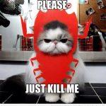 Por favor, matadme!